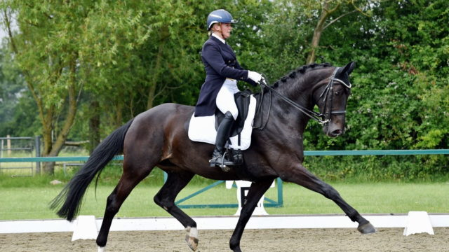 Heike Holstein Set for National Dressage Championships