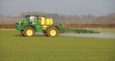 Weed Control in Grassland