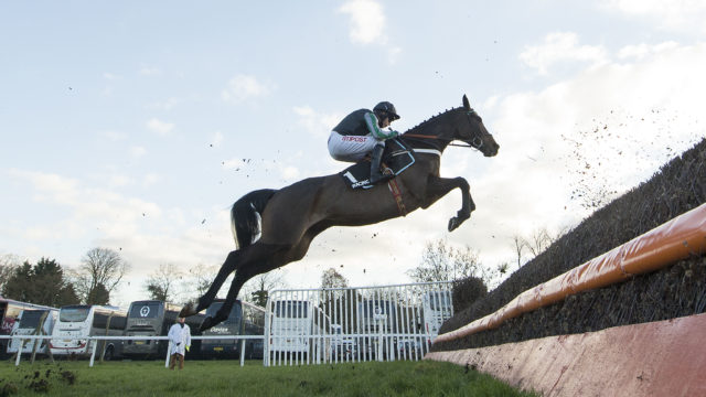 The Cheltenham Champion's Choice