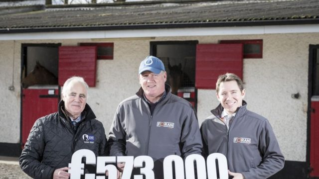 Foran Equine and Irish European Breeders' Fund Join Forces to Sponsor Auction Series