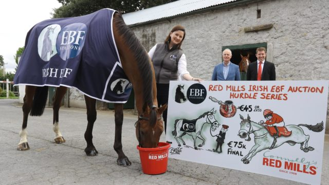 Connolly's RED MILLS join forces with Irish EBF  to Sponsor Auction Hurdle Series