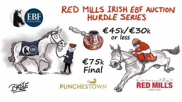 €75,000 RED MILLS Irish EBF Auction Series Final  Announced for Punchestown Festival