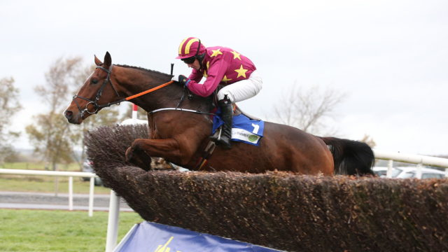 Gold Cup entry Monalee heads a select field for RED MILLS Chase